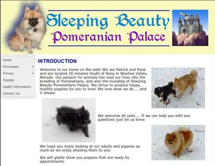Sleeping Beauty Pomeranians